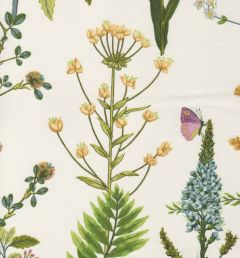 Berkshire Meadow by P. Kaufman in honey dew