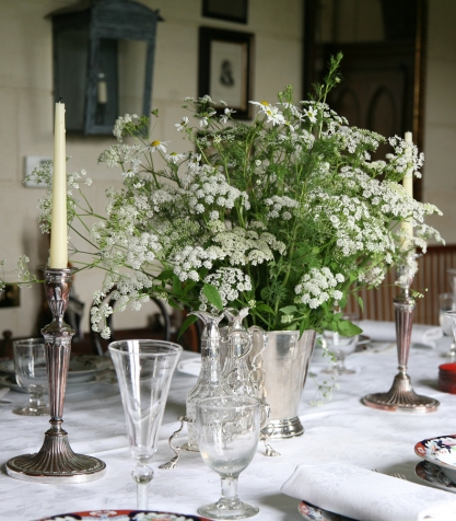 Queen Anne's lace and daisies